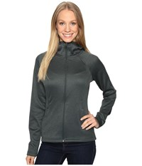 The North Face Agave Hoodie Darkest Spruce Heather Women's Sweatshirt Gray