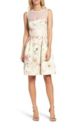Maggy London Women's Metallic Brocade Fit And Flare Dress Soft White Multi