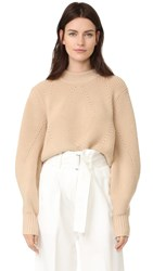 Dkny Extra Long Sleeve Pullover With Back Opening Nude