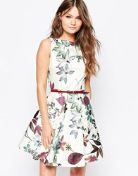 Closet Belted Skater Dress In Winter Cherry Print Cream