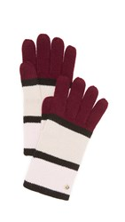 Kate Spade Colorblock Gloves Midnight Wine