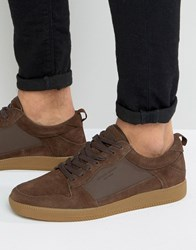 Kg By Kurt Geiger Younge Sneakers Brown