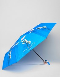 Ted Baker Umbrella In Harmony Floral Print Bright Blue