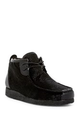 Australia Luxe Collective Lucan Genuine Sheepskin Lined Lace Up Shoe Black