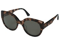 Toms Luisa Matte Havana Fashion Sunglasses Brown