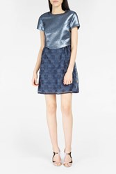 Paul Joe Sister Women S Armada Cat Embroidered Dress Boutique1 Navy