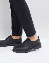 Zign Leather Lace Up Shoes In Black