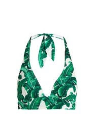 Dolce And Gabbana Banana Leaf Print Bikini Top Green Multi