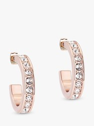 Ted Baker Seannia Swarovski Crystal Hoop Earrings Rose Gold