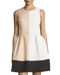 Julie Brown Kiana Colorblock Fit And Flare Dress Ivory Tan