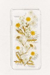 Urban Outfitters Oops A Daisy Iphone 8 7 6 Plus Case Clear