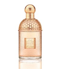 Guerlain Aqua Allegoria Pamplelune Edt 75Ml Female