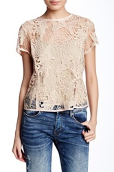 Fate Sheer Lace Blouse Beige