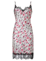 Alice By Temperley Somerset By Alice Temperley Floral Animal Chemise Pink Multi