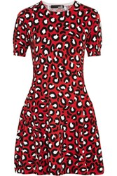 Love Moschino Leopard Print Cotton Blend Mini Dress Red