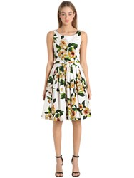 Samantha Sung Printed Stretch Cotton Dress