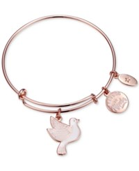 Unwritten Believe In Miracles Dove Charm Adjustable Bangle Bracelet In Rose Gold Tone Stainless Steel