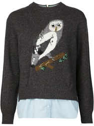 Muveil Shirt Hem Owl Sweater Grey