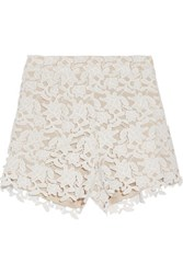 Raoul Guipure Lace Shorts White