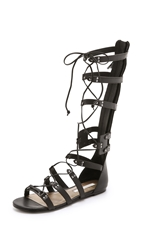 Cynthia Vincent Franky Tall Gladiator Sandals Black