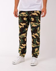 Dickies Belmont Sweatpants Multi Green