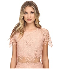 For Love And Lemons Luma Crop Top Pale Blush Women's Clothing Gray
