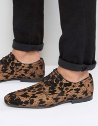 Asos Lace Up Shoes In Leopard Print Suede Gold