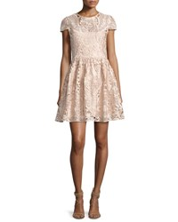 Alice Olivia Gracia Cap Sleeve Lace Cocktail Dress Light Pink