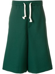 Societe Anonyme Ultra Wide Shorts Green