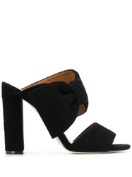 Paris Texas Bow Mules Black