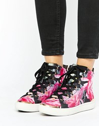 Ted Baker Floral Hitop Trainer Floral Multi
