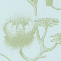 Cole And Son Lily Wallpaper 69 3112