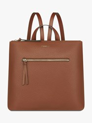 Fiorelli Finley Large Zip Top Backpack Chestnut