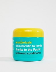 Anatomicals From Horrifc To Terrific Thanks To The Pacific Seaweed Conditioner Clear