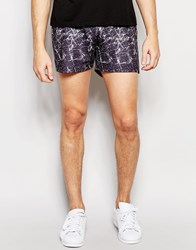 Wasted Youth Black Distressed Shorts Black