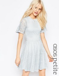 Asos Petite Skater Dress With Lace Back And Keyhole Soft Grey Navy