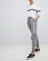 Hollister Logo Classic Track Pant Gray