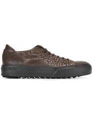 Pantanetti Lace Up Sneakers Brown