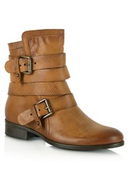 Daniel Marvelous Buckle Strapped Ankle Boots Brown