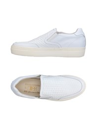D'acquasparta Sneakers White