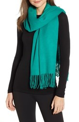 Trouve Solid Scarf Green Parakeet