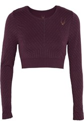 Lucas Hugh Stardust Cropped Metallic Striped Stretch Jersey Top Plum