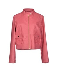 Max And Co. Jackets Light Purple