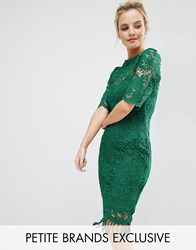 Paper Dolls Petite All Over Lace Dress With Contrast Lining And Tassel Hem Emerald Green