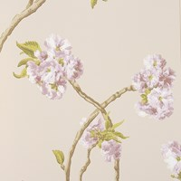 Nina Campbell Orchard Blossom Wallpaper Ncw4027 03