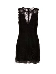 Morgan Textured Lace Dress Black