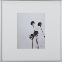 Cb2 Gallery Brushed Silver 11X14 Picture Frame