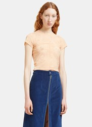 Eckhaus Latta Lapped Floral Embroidered Sheer Cropped T Shirt Pink