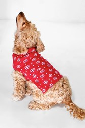 Boohoo Snowflake Dog Christmas Jumper Red