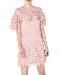 Miss Selfridge Lilac Lace Dress Purple